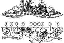 Fence line garden