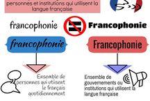 Culture française / Ensemble d'infographies pour travailler la culture française