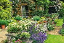 Gardening & Cultivations