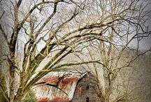 Disappearing barns / by Candy Poole