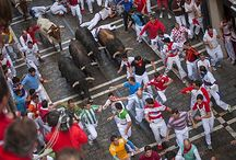 Running of the Bulls Festival / Attracting over a million people each year, the San Fermin festival's most renowned event is the encierro, or running of the bulls, in which a bull is let loose in the streets every morning for a week. Hundreds of people run in front of the bulls down a narrow street in a section of the old town of Pamplona, ending in the Pamplona bullring.