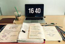 Study / Study