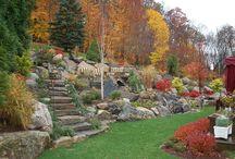 Zahrada v kopci / Zahrada