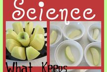 Third Grade Scientists / by Allison Tinklenberg-Barrett