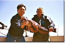 Go Fish  / by Sunshine Coast Tourism, BC
