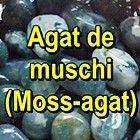 AGAT DE MUSCHI