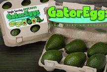 Gator Eggs - Mini Avocados
