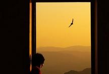 Window / by Tadashi Nishikawa