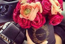 ✿  Lovely Flowers ✿