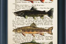 Fishing Decor / by Beth Forehand