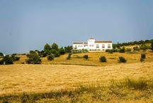 Arriadh Hotel / Expansion and refurbishment of a rural hotel in the Serrania de Ronda