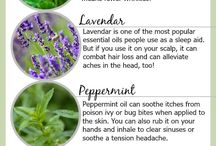 Essential Oil Beauty