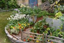Ogród-owoce,warzywa-rabaty,trelingi