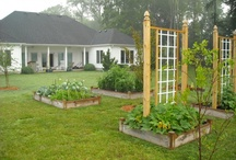 Garden Ideas / by gail Wickwire