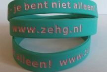 ZEHG Foundation