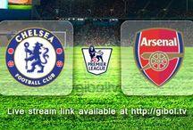 Premier League / England Premier League 2015/2016 Live Stream Schedules