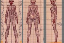 Female Anatomy / This board is about approaching the female anatomy through various references.