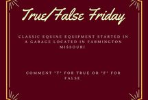 Classic Equine Equipment: About Us / Classic Equine Equipment was founded in 1991 on a love for horses and a commitment to their ultimate care and safety. Want to learn about us? visit www.classic-equine.com/about-us