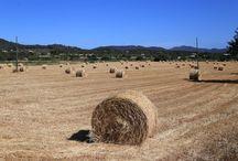 Santa Eularia und Umgebung / Santa Eularia ist ein Urlaubsort auf Ibiza