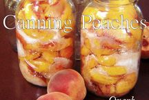 FOOD-CANNING/FREEZE / by TAMBRA FRANK