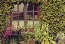 Favorite Places & Spaces / by Dionne Cotterman