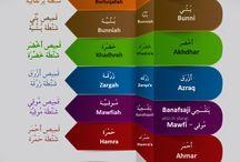 Language : Arabic Vocabulary