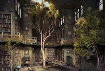 Vieilles bibliothèques