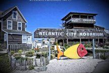 South Jersey Eco Tourism