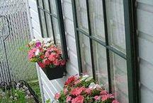 janelas gom floreira