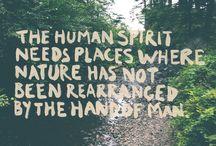 Wisdom / Quotes that make sense