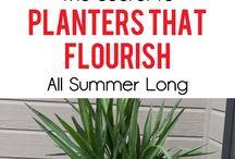 The secret ingredient to planters
