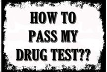 How To Pass My Drug Test
