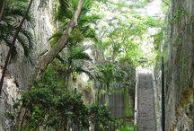 Bahamas / by Angela Crutcher