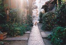 streets & alleys~