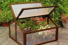Grow Your Own / A selection from the Primrose Grow-Your-Own range. Including greenhouses, grow tunnels, cold frames and grow bags. / by Primrose