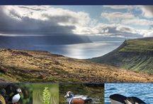 IJsland en Faroer
