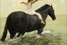 I like...ponies :)
