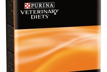 Veterinary Dog Foods