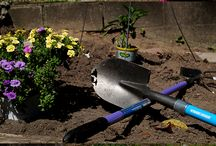 Gardening/Outdoor Living / by Heather @thedomesticdiva