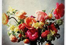 bloemen schiderijen