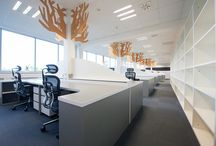 Offices Design by Julie Wimmer Design / Interior Design, Offices, Space, Idea, Nature Touch, Rowan Tax, Client, Colors