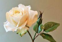 Robert H. flowers