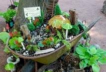 Fairy Garden / by Lynne Slater