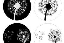 üveglencse minták