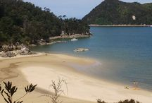 Abel Tasman Coastal Path Adventure - New Zealand January 2017 / We are planning our Abel Tasman, New Zealand kayaking and hiking adventure for January 2017. Check the website to confirm the dates www.womensholidays.com  Come join us!