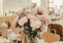 wedding | decoration & get up
