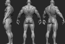 근육 신체