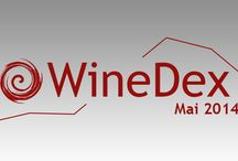 Winedex, Belles enchères / Toutes les tendances des ventes aux enchères de vin