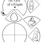 Penguin Unit / by Sarah Wise