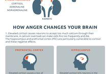 B UNDERSTAND Moods / Fear/Anger/Depression